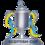 Coppa di Scozia